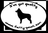 I've Got Quality Schipperkes on Furry-Paws.com