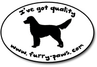I've Got Quality Nova Scotia Duck Tolling Retrievers on Furry-Paws.com