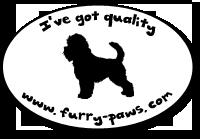 I've Got Quality Affenpinschers on Furry-Paws.com