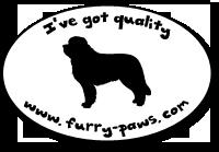 I've Got Quality Saint Bernards on Furry-Paws.com