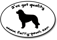 I've Got Quality Bernese Mountain Dogs on Furry-Paws.com