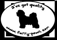 I've Got Quality Havaneses on Furry-Paws.com