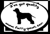 I've Got Quality Irish Water Spaniels on Furry-Paws.com