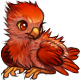 Fawkes the Phoenix Chick